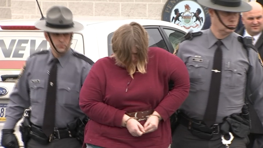 Berks County Mom Arrest Children Killed Lisa Snyder