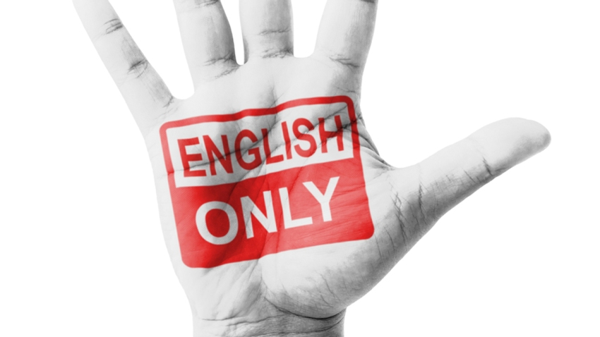 TLMD-english-only