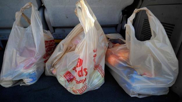 bolsas basura 27 may