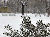 [UGCPHI-CJ]Philadelphia snow
