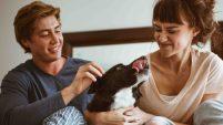 Varios encuestados indicaron que pudieran romper una relación amorosa si su pareja no se lleva con su perro, de acuerdo con un reciente estudio.