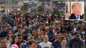 Trump firma orden para limitar solicitudes de asilo