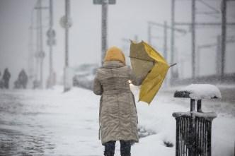 Hasta 85 pulgadas de nieve para el 2019