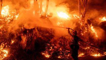 Incendios en California: Trump podría recortar fondos
