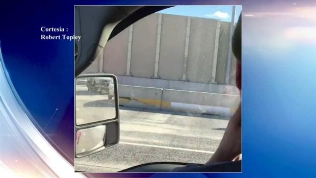 [TLMD - PHI] Captado en cámara: Toro fugado por la autopista
