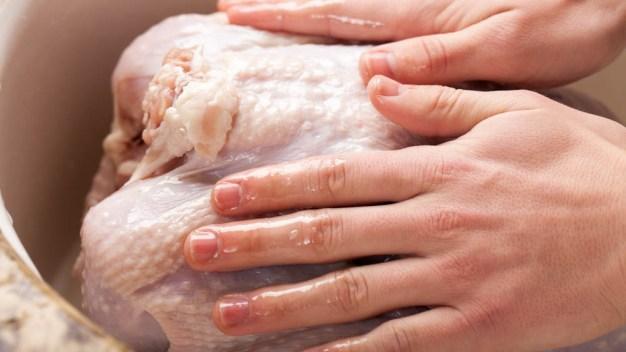 Expertos: el peligro de lavar el pavo antes de cocinarlo