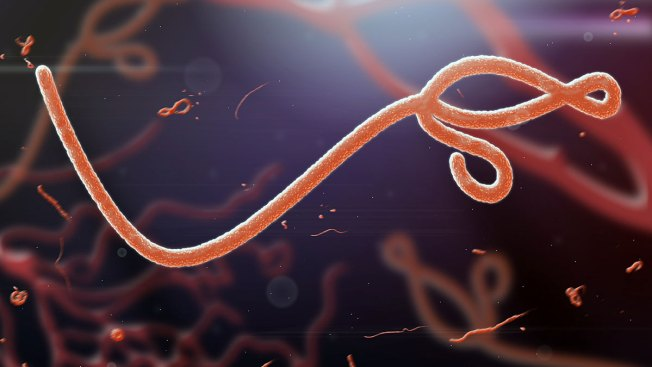 Atenderán en el país a paciente con ébola