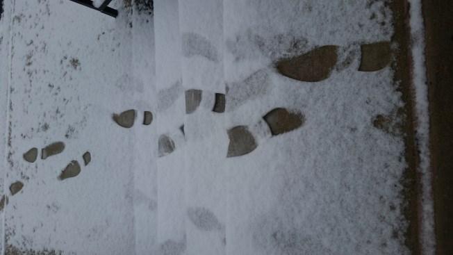 Conoce cuánta nieve cayó en tu zona