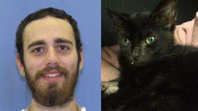 Gato drogado no podrá ser adoptado